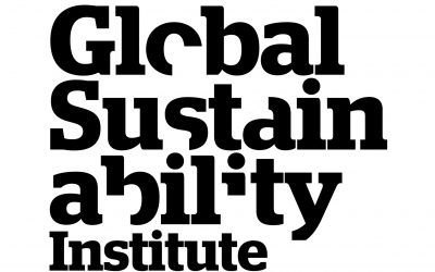 Global Sustainability Institute Conference presentation