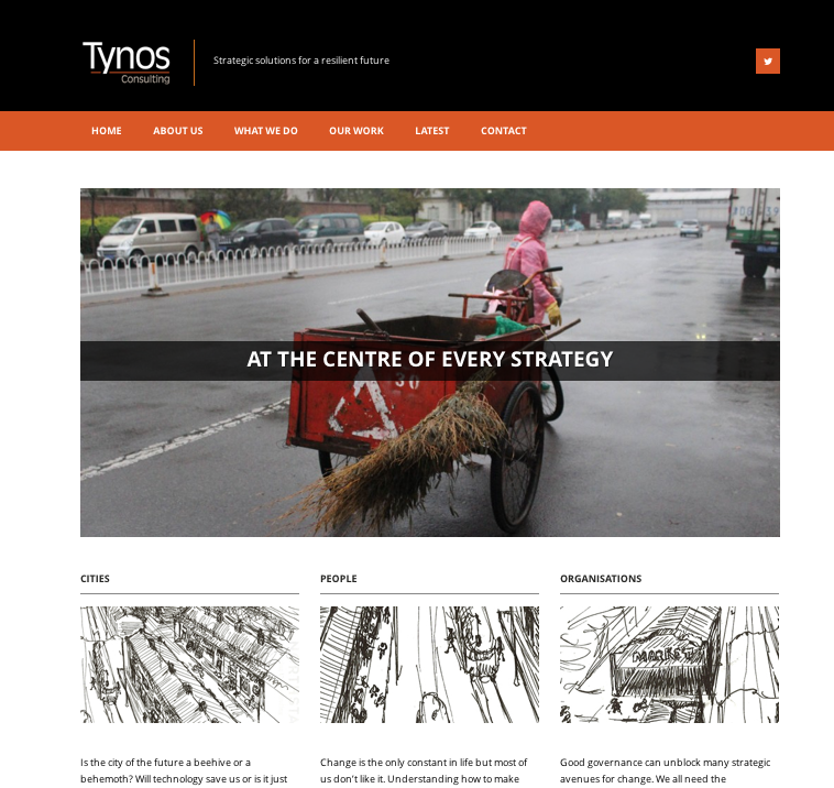 Tynos Consulting website